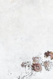 Tổng Tài Phúc Hắc Bá Đạo: Lão Bà, Em Thật Mê Người!